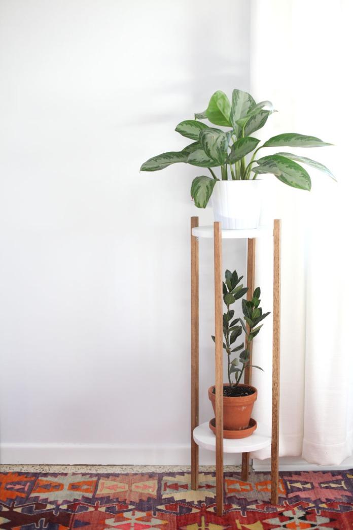 midcenturyplant-1